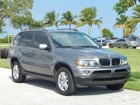 2004 BMW X5 for sale at VE Auto Gallery LLC in Lake Park FL
