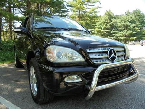 2004 Mercedes-Benz M-Class for sale at Route 41 Budget Auto in Wadsworth IL