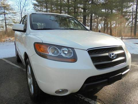 2007 Hyundai Santa Fe for sale at Route 41 Budget Auto in Wadsworth IL