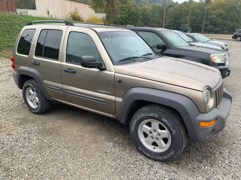 2004 Jeep Liberty for sale at SAVORS AUTO CONNECTION LLC in East Liverpool OH