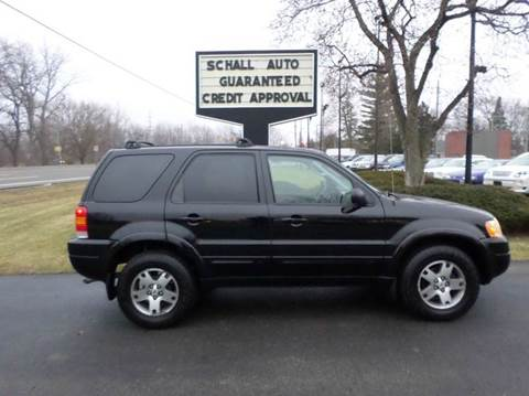 2004 Ford Escape for sale at Schall Automotive in Monroe MI