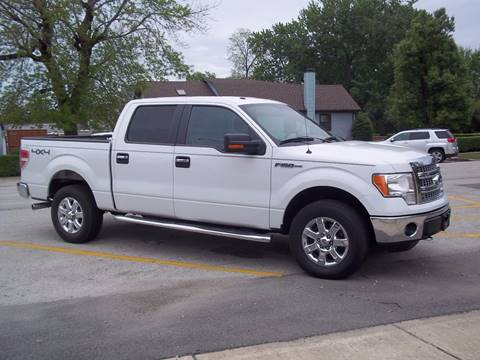 2013 Ford F-150 for sale at Robin's Truck Sales in Gifford IL