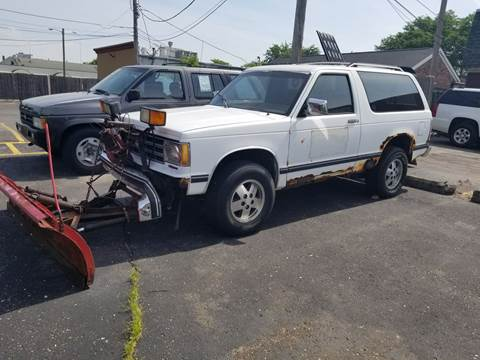 1989 Chevrolet S-10 Blazer for sale at DALE'S AUTO INC in Mt Clemens MI