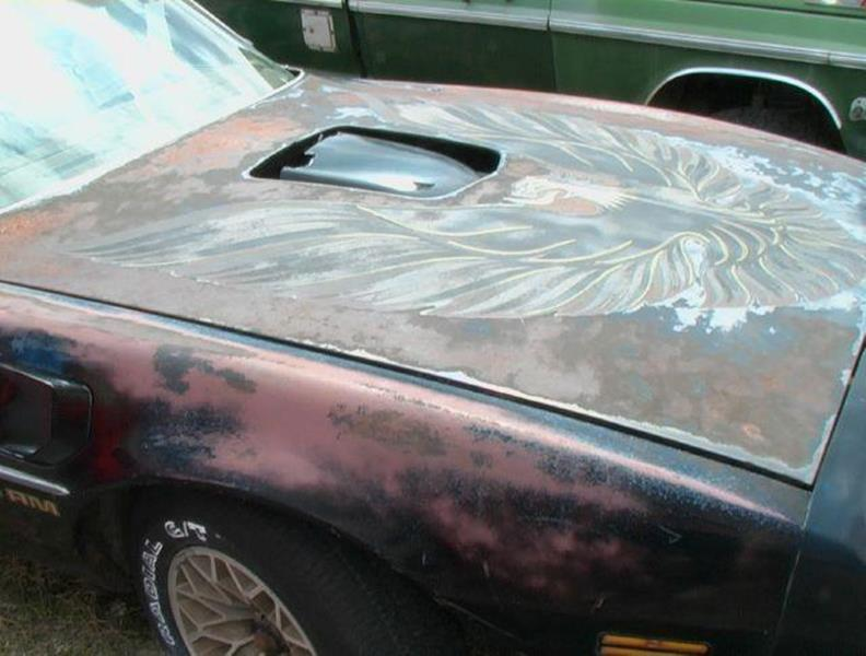 1979 Pontiac Trans Am SE - Stevensville MT