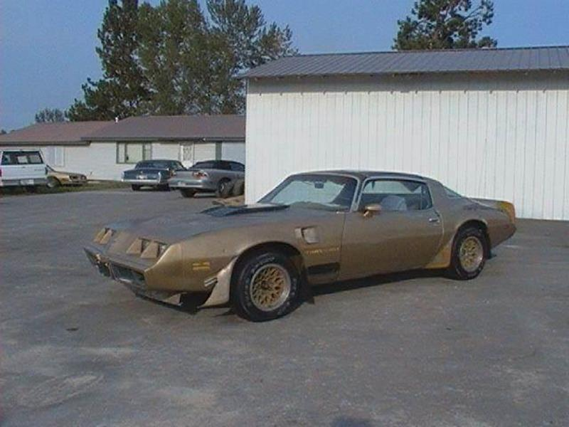 1979 Pontiac Firebird for sale at 1 Owner Car Guy in Stevensville MT