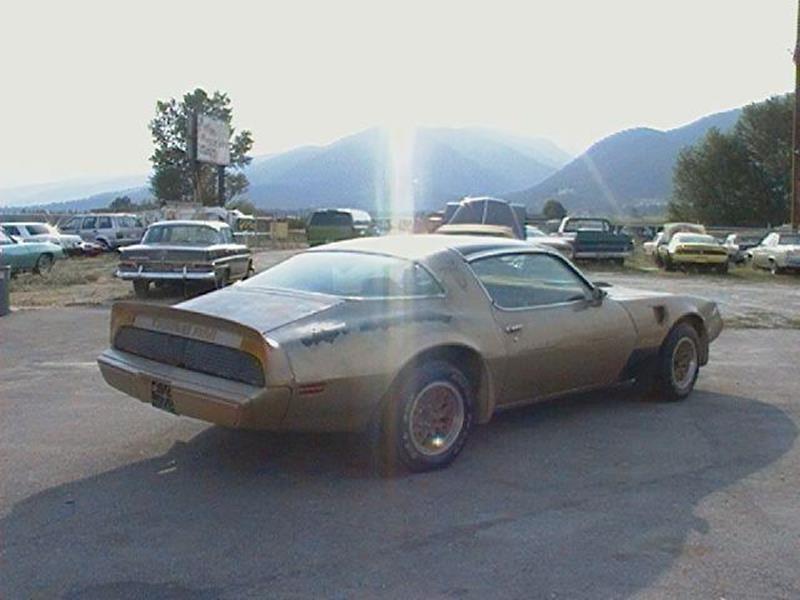1979 Pontiac Firebird Trans Am - Stevensville MT