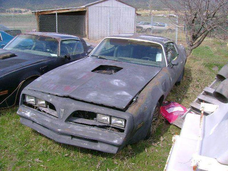 1978 Pontiac Firebird for sale at 1 Owner Car Guy in Stevensville MT
