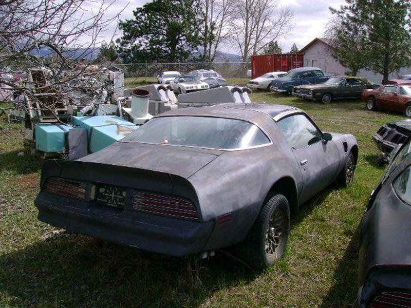 1978 Pontiac Firebird Trans Am - Stevensville MT