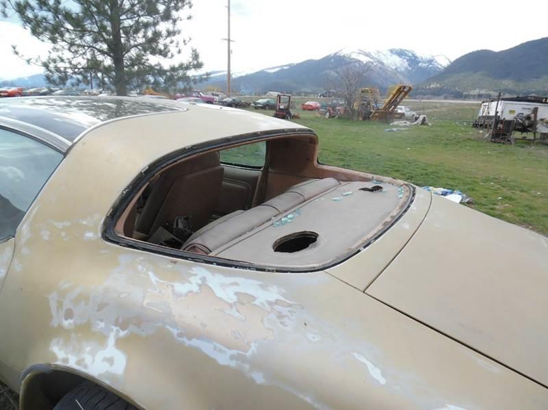 1978 Pontiac Firebird Trans Am SE - Stevensville MT