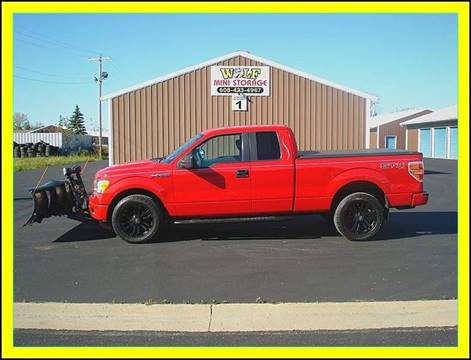 2009 Ford F-150 for sale at Cambridge Automotive Repair in Cambridge WI