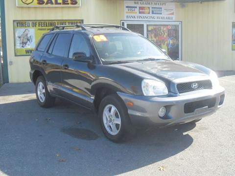 2004 Hyundai Santa Fe for sale at Mr. G's Auto Sales in Shelbyville TN