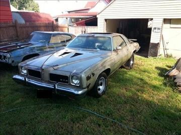 Worksheet. 1973 Pontiac GTO For Sale  Carsforsalecom