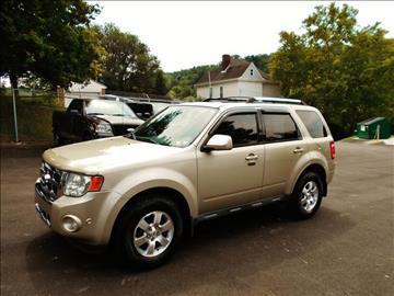 2010 Ford Escape for sale at Premiere Auto Sales in Washington PA