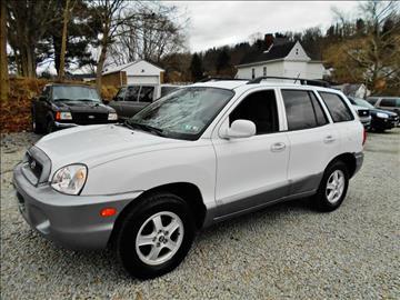 2004 Hyundai Santa Fe for sale at Premiere Auto Sales in Washington PA
