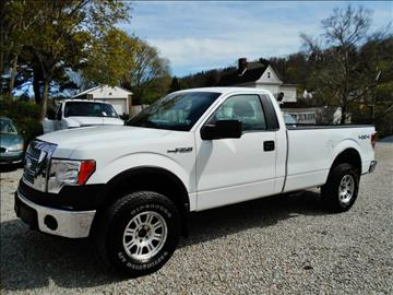 2009 Ford F-150 for sale at Premiere Auto Sales in Washington PA