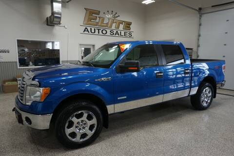 2012 Ford F-150 for sale at Elite Auto Sales in Idaho Falls ID