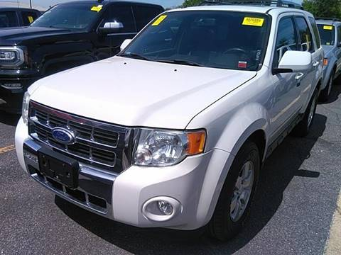 2010 Ford Escape for sale at Great Lakes Classic Cars in Hilton NY
