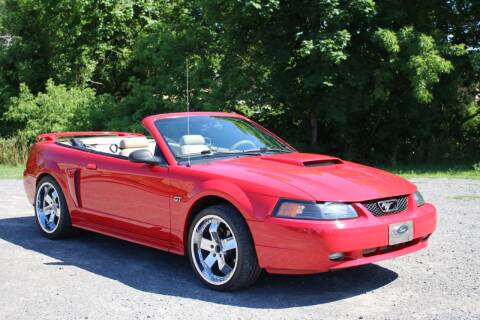 2002 Ford Mustang for sale at Great Lakes Classic Cars in Hilton NY