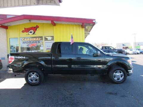 2014 Ford F-150 for sale at Cardinal Motors in Fairfield OH