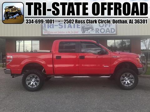 2014 Ford F-150 for sale at Mike Schmitz Automotive Group - Tri-Stateoffroad.net in Dothan AL