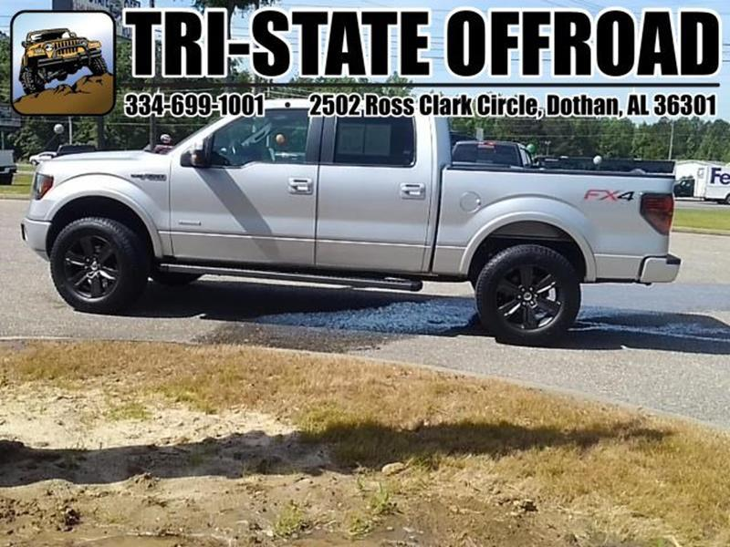 2012 Ford F-150 for sale at Mike Schmitz Automotive Group - Tri-Stateoffroad.net in Dothan AL