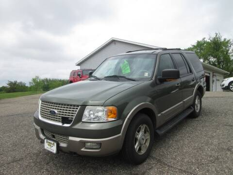 2003 Ford Expedition Eddie Bauer for sale at Hutchinson Auto Sales in Hutchinson MN