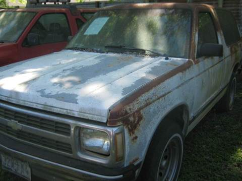1991 Chevrolet S-10 Blazer for sale at Ody's Autos in Houston TX