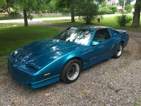 1987 Pontiac Firebird for sale in Westland, MI