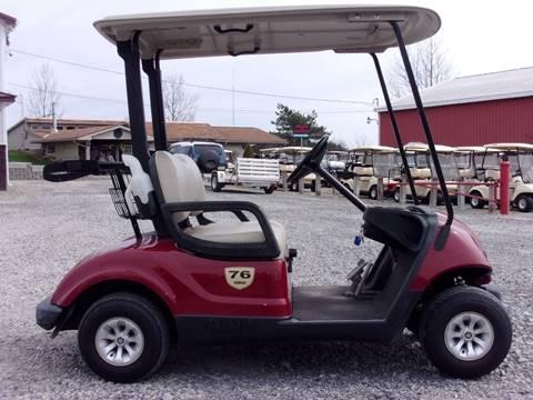 2013 Yamaha Golf Cart Drive (G-29)