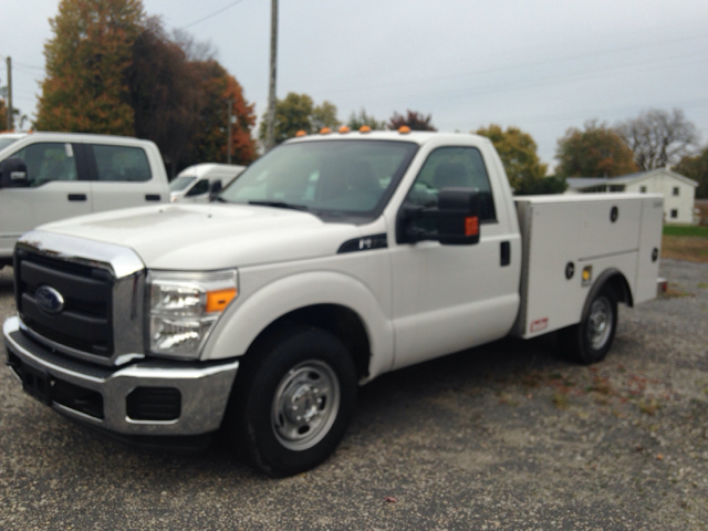 2015 Ford F-250 Super Duty for sale at Kenny Vice Ford Sales Inc - New Inventory in Ladoga IN