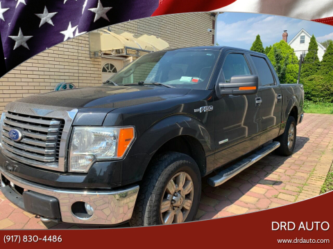 2011 Ford F-150 for sale at DRD Auto in Flushing NY