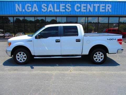 2009 Ford F-150 for sale at NORTH GEORGIA Sales Center in La Fayette GA