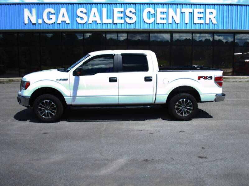 2014 Ford F-150 for sale at NORTH GEORGIA Sales Center in La Fayette GA