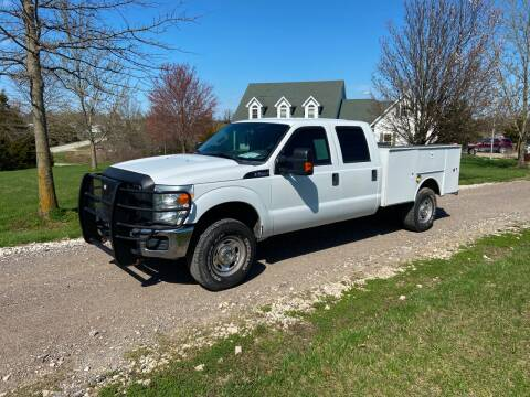 2012 Ford F-250 Super Duty XL for sale at Ken's Auto Sales & Repairs in New Bloomfield MO