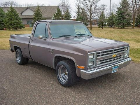 1985 Chevrolet C/K 10 Series for sale in Rogers, MN