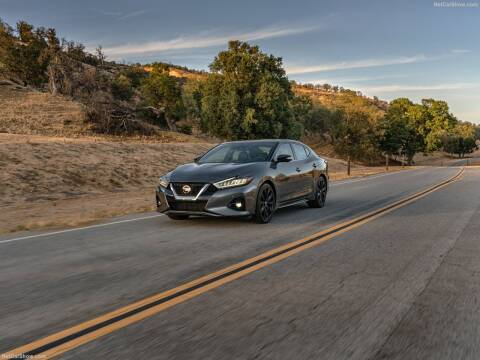 2020 Nissan Maxima for sale at Xclusive Auto Leasing NYC in Staten Island NY