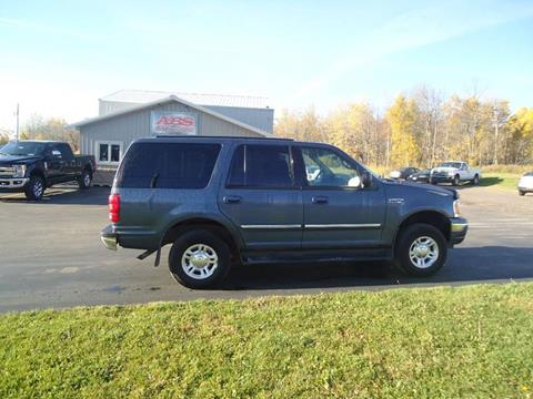 1999 Ford Expedition for sale in Hermantown, MN