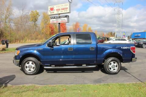 2010 Ford F-150 for sale at D & B Auto Sales LLC in Washington Township MI