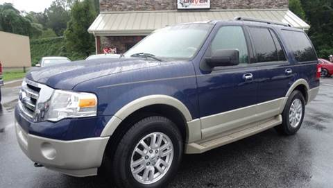 2010 Ford Expedition for sale at Driven Pre-Owned in Lenoir NC