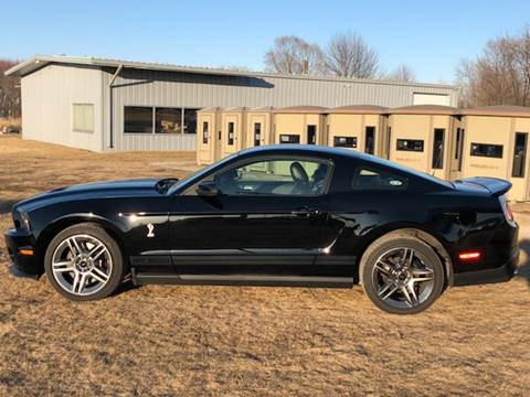 2010 Ford Shelby GT500 for sale at Sam Buys in Beaver Dam WI