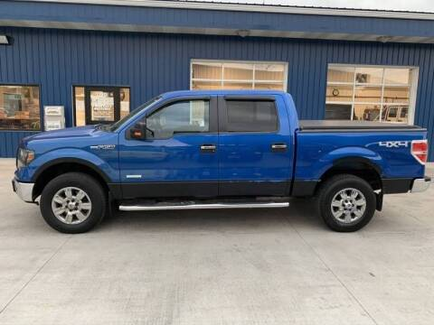 2012 Ford F-150 for sale at Twin City Motors in Grand Forks ND