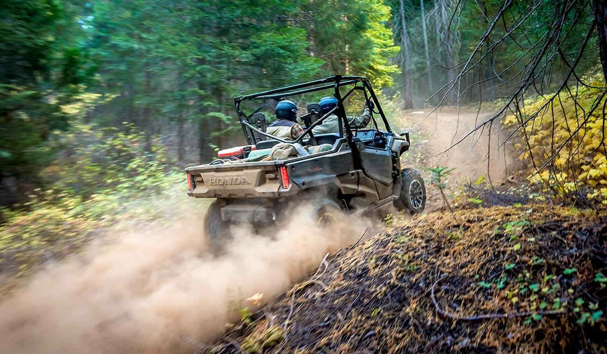 2017 Honda Pioneer 1000 EPS for sale at Vehicle Network, LLC - Ron Ayers Motorsports in Greenville NC