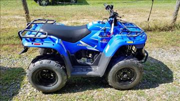 2017 Linhai M150 ATV for sale at Vehicle Network, LLC - ULTRA POWER SPORTS in Raleigh NC