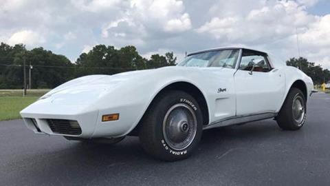 1973 Chevrolet Corvette for sale at Vehicle Network, LLC - I-95 Muscle in Hope Mills NC