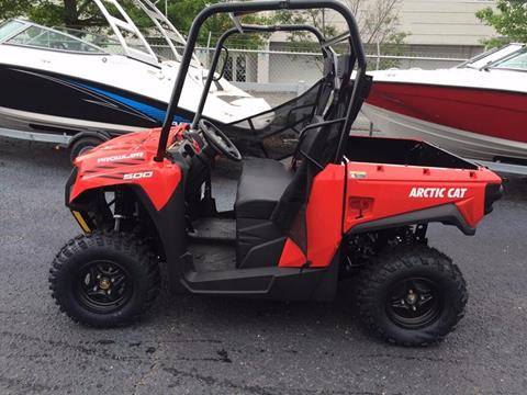 2017 Arctic Cat PROWLER 500 for sale at Vehicle Network, LLC - Performance East, INC. in Goldsboro NC