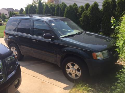 2003 Ford Escape for sale at More For Less Auto Sales LLC in Lorain OH