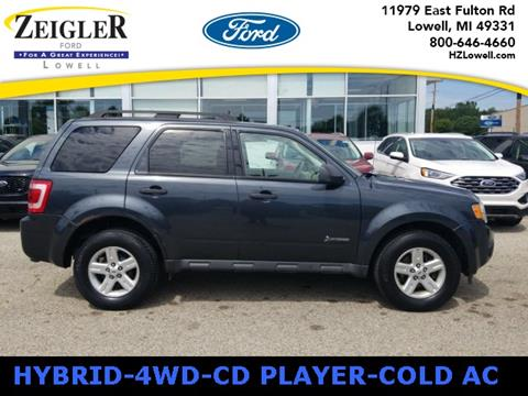 2010 Ford Escape Hybrid for sale in Lowell, MI