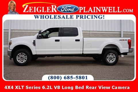 2019 Ford F-250 Super Duty for sale at Zeigler Ford of Lowell in Lowell MI