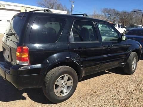 2005 Ford Escape for sale at Gloe Auto Sales in Lubbock TX