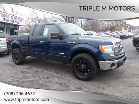 2014 Ford F-150 XLT for sale at Triple M Motors in Saint John IN